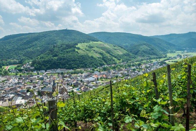 Rhein und Ahr